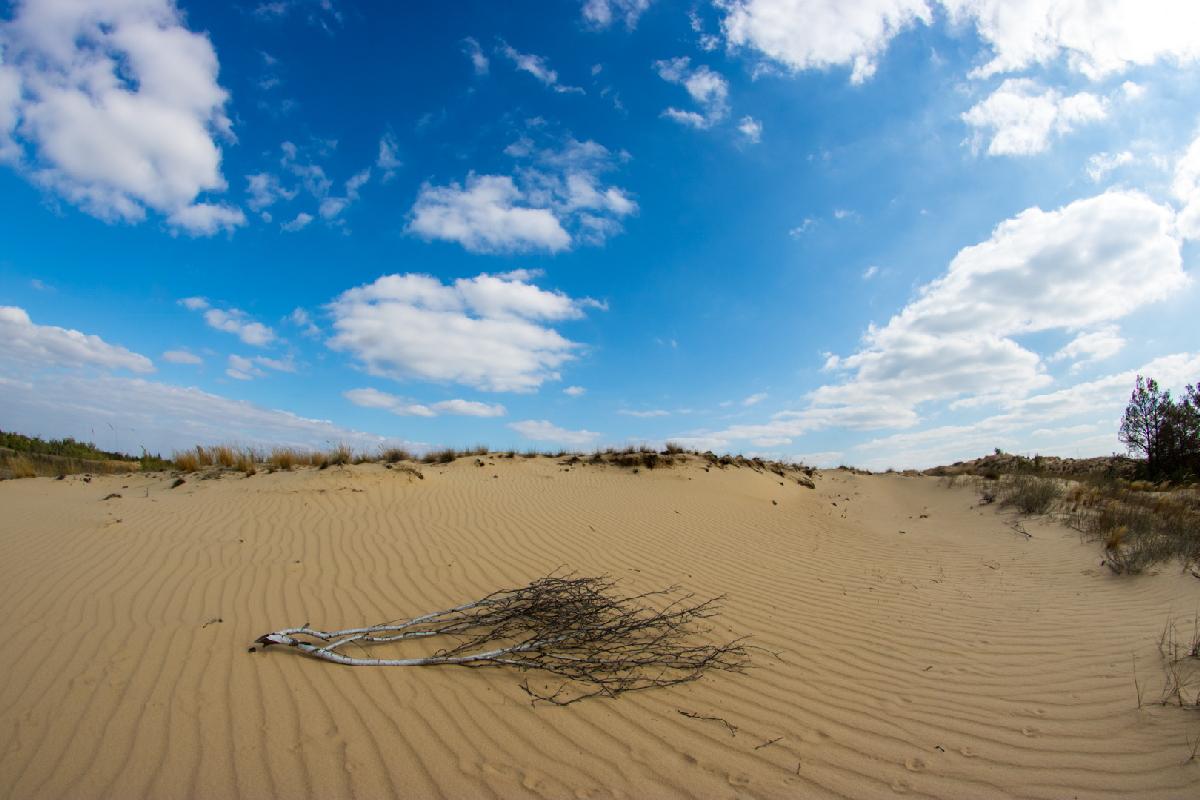2 день Олешковские пески