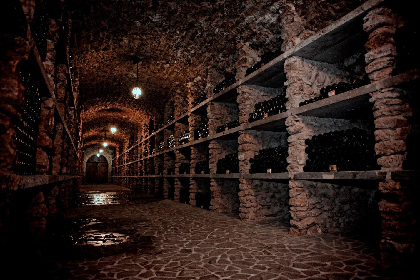 5 день Экскурсия по винодельческому комплексу + дегустация украинских вин. Аскания Нова